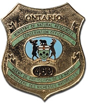 Seven Toronto area men have pleaded guilty and were fined a total of $12,000 for fishing offences.