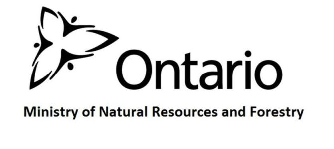 Ontario Announces New Big Game Management Advisory Committee