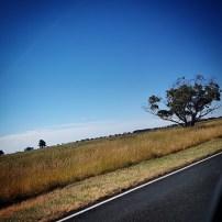 Princes Highway (4)