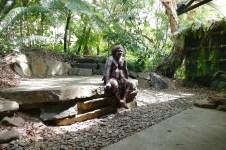 The Aboriginal dancer, Kookaburra