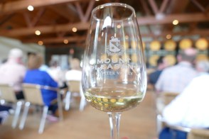 Mount Pleasant Winery, Hunter Valley 3/2/2017