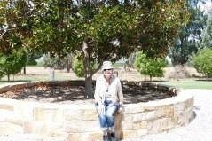 Garnet at Merrilong Pastorale