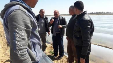Photo of زراعة رفح تنظم ندوة ارشادية حقلية لمزارعي البطيخ في منطقة الشوكة