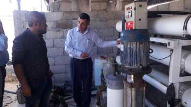 Photo of تجربة نجاح مزارع للتغلب على مشكلة ملوحة المياه