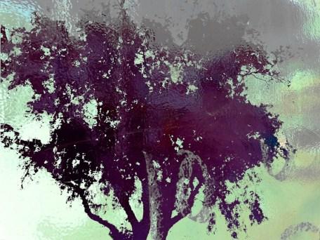MoArt Tree Magic 36