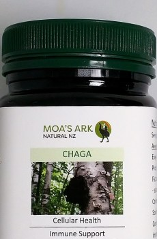 Chaga Herbal Extract – Medicinal Immune Health – 120 Veg Caps