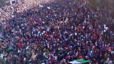 الجزائريون ينتفضون ضد العهدة الخامسة في مليونية الغضب (صور) 5
