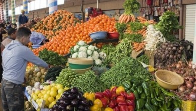 لإنهاء المضاربة في الأسعار..السماح لمنتجي الخضر والفواكه بتزويد المحلات التجارية الكبرى والمتوسطة مباشرة 5