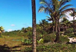 O Acesso à praia é propriedade da empresa dos fundadores da ecovila