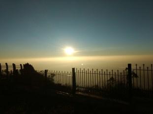 Morning sun-nature