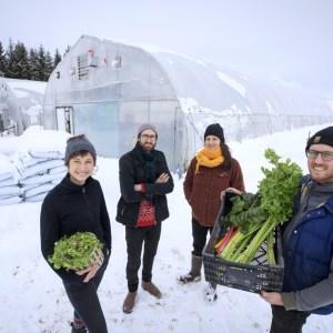 Agriculture hivernale  | Des légumes qui poussent dans la terre… en janvier