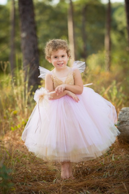 A little girl dressed as a fairy princess