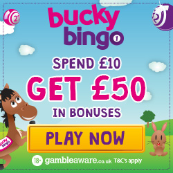 bucky bingo new welcome bonus