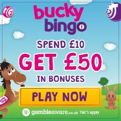 bucky bingo new welcome bonus