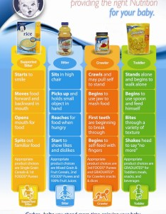 Gerber food chart for babies foodstutorial also baby stages mobile discoveries rh mobilediscoveries