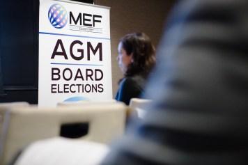 MEF_AGM_2015-19082