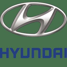 Эмулятор катализатора hyundai