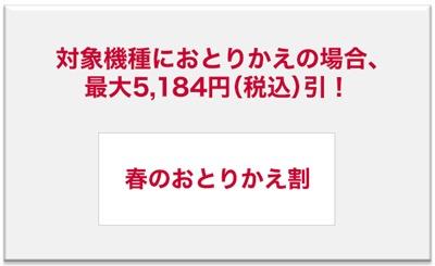 spring_otorikaewari_2017_D