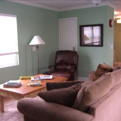 Mobile Home Living Room Design Ideas With Brown Sofa 16 Great Decorating For Homes More Tips
