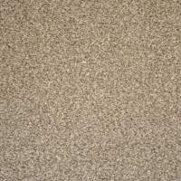 Shop Engineered Floors Stock Carpet 12-ft W x Cut-to ...