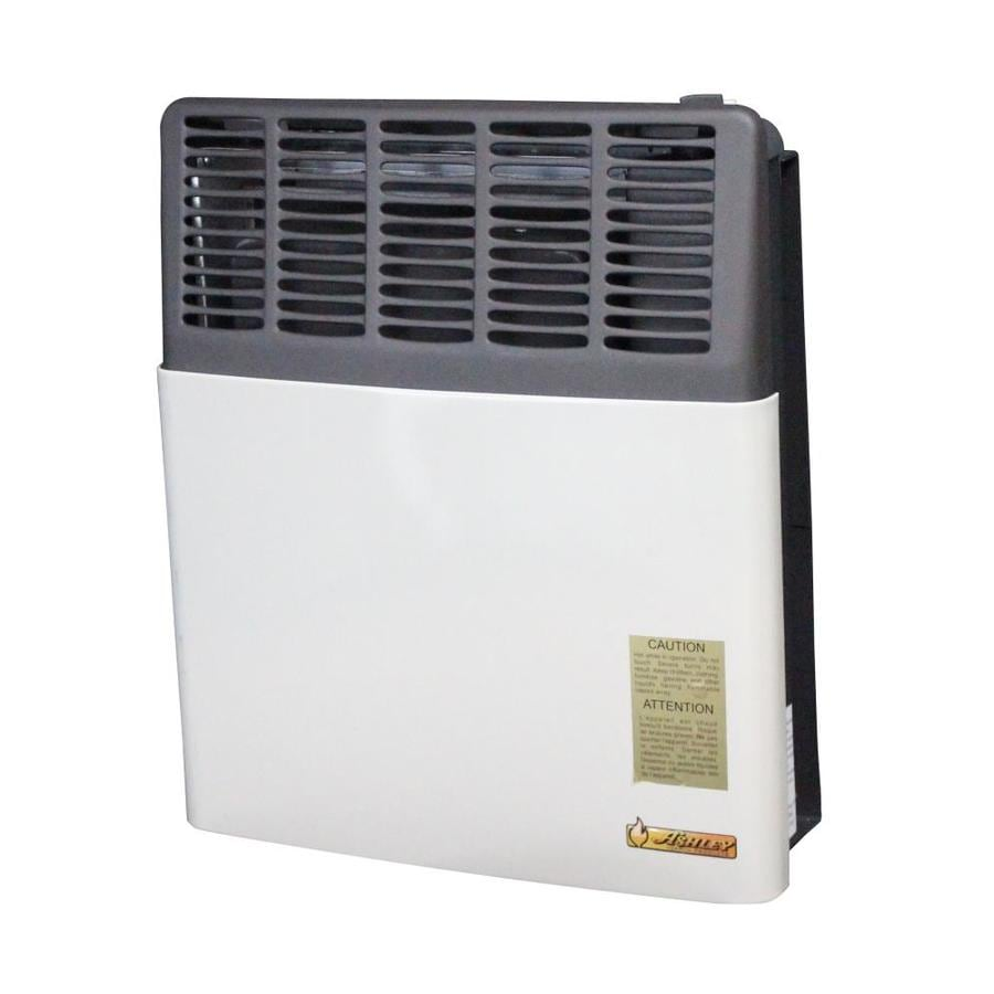 Shop Ashley Hearth Products 11000BTU WallMount Natural Gas Vented Convection Heater at Lowescom
