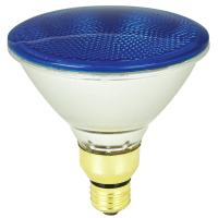 Shop Mood-lites 90-Watt PAR38 Medium Base (E-26) Blue ...