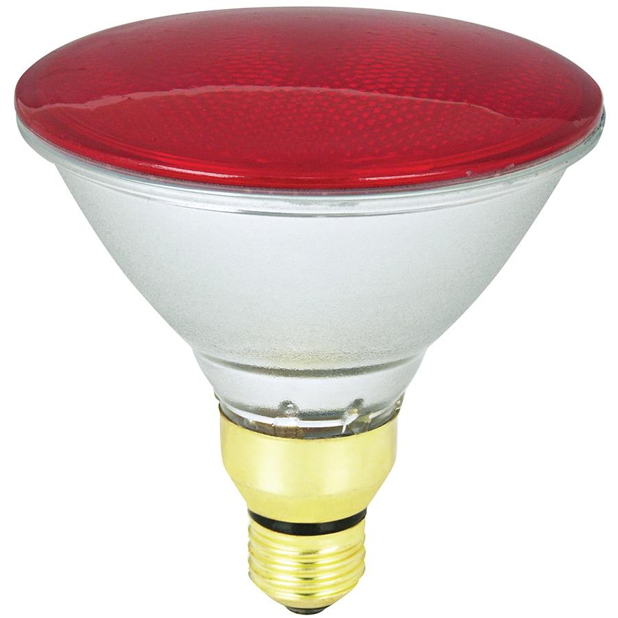 Recessed Flood Light Bulbs