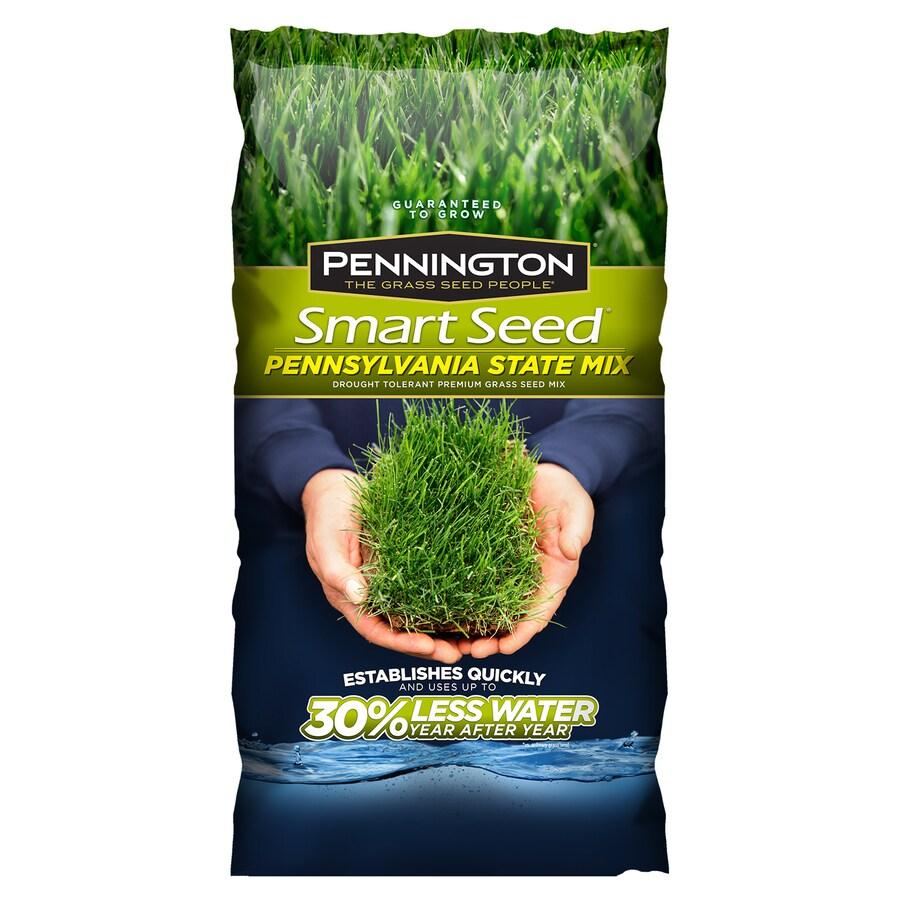 Pennington Smart Seed Pennsylvania State Mix 20lb Sun and