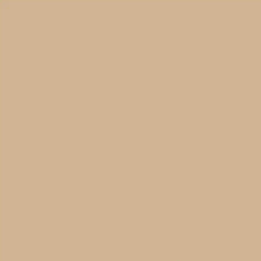 Dromedary Paint Sherwin Williams Camel