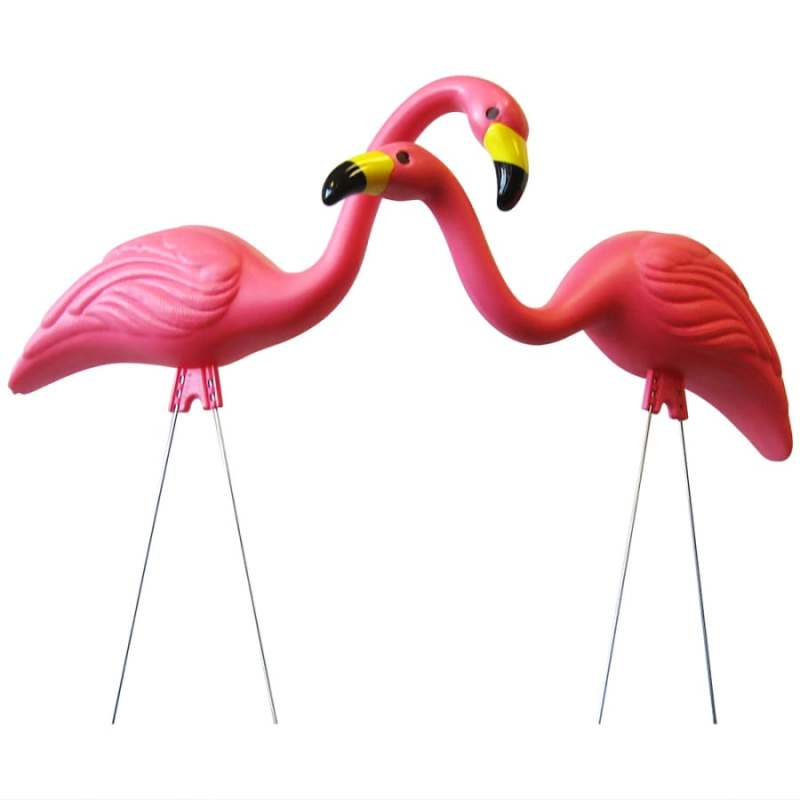 Supreme Pink Flamingo Shop Pink Flamingo At Lowes Cape Coral