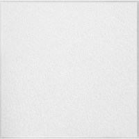 """Shop Armstrong 24"""" x 24"""" White Ceiling Tile at Lowes.com"""