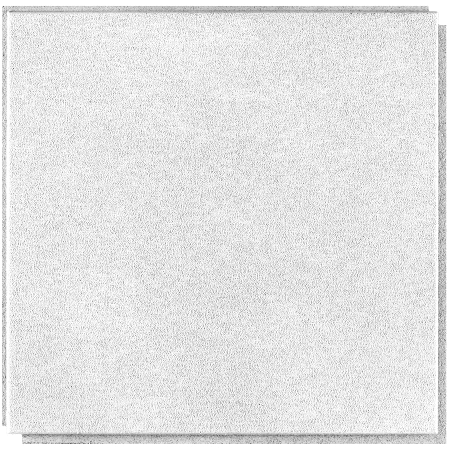 armstrong sahara homestyle 20 pack white smooth surface mount acoustic ceiling tiles common 16 in x 16 in actual 15 96 in x 15 96 in