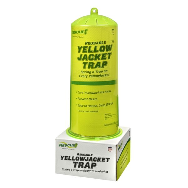 Wasp Yellow Jacket Shoppinder