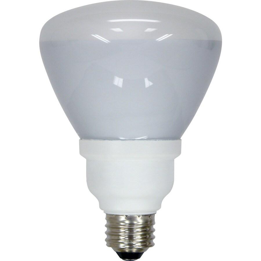 Bathroom Flood Light Bulb