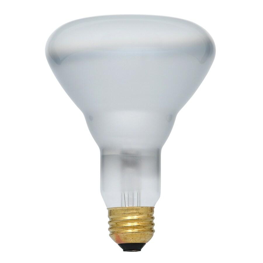 Thomas Edison Light Bulb Diagram