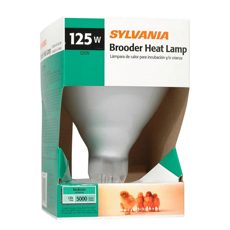 Bathroom Heat Light Bulb