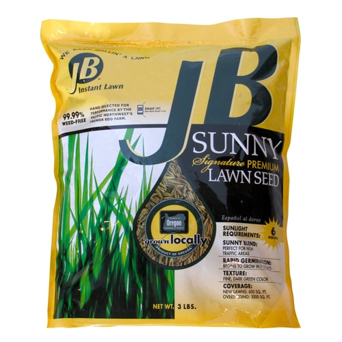 JB Instant Lawn JB Signature 3-lb Perennial Ryegrass Grass ...