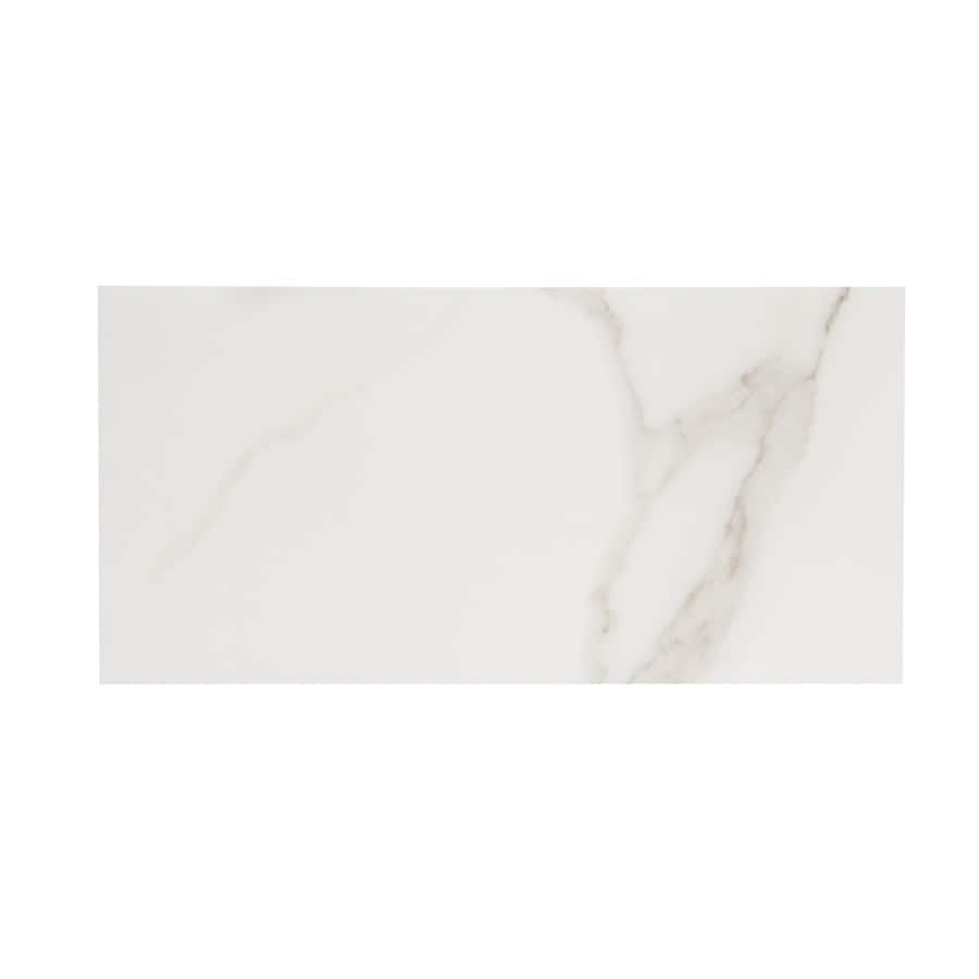 style selections calacatta polished white 6 in x 12 in polished porcelain marble subway floor tile