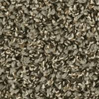 Shop Shaw Stonehenge 12-ft Textured Interior Carpet at ...