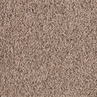 Shop STAINMASTER Essentials Stock Carpet 12-ft Shag/Frieze ...
