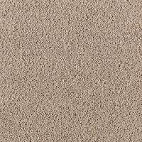 Shop Mohawk Gratitude 15-ft Textured Interior Carpet at ...