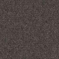 Shop Mohawk Home and Office 12-ft W x Cut-to-Length ...