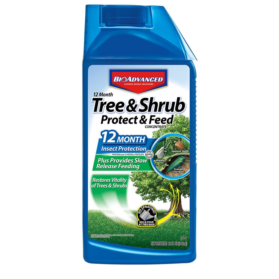 Shop BAYER ADVANCED TreeShrub Protect Liquid at Lowescom