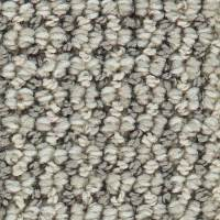Shop Coronet Mesmeric Smoke Screen Berber Indoor Carpet at ...