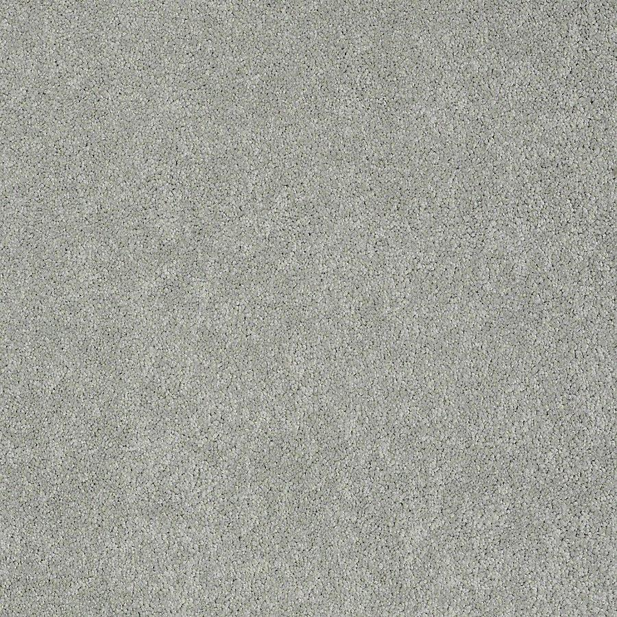 Shop STAINMASTER PetProtect Baxter II 12-ft Textured