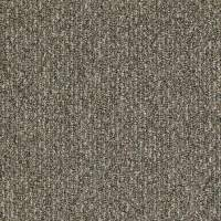 Shop Shaw Home and Office Mineralite Berber Outdoor Carpet ...