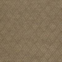 Shop Shaw Home and Office Monterey Point Berber Outdoor ...