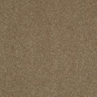 Shop Shaw Cornerstone Intuition III 15-ft W x Cut-to ...