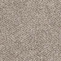Shaw Stock Impact Textured Indoor Carpet at Lowes.com