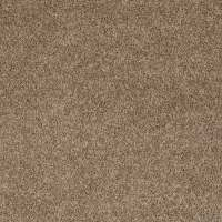 Shop Shaw Stock Putty Textured Indoor Carpet at Lowes.com